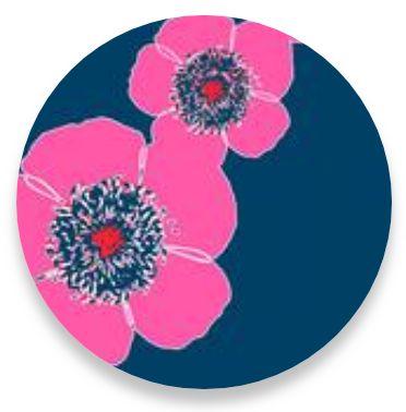 Poppy Stripes Navy-Pink