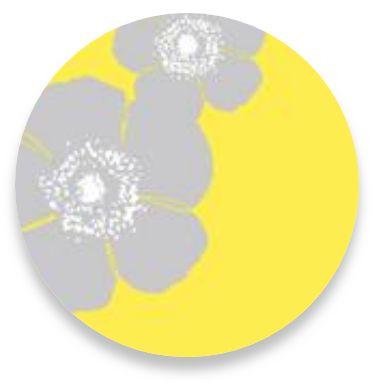 Poppy Yellow
