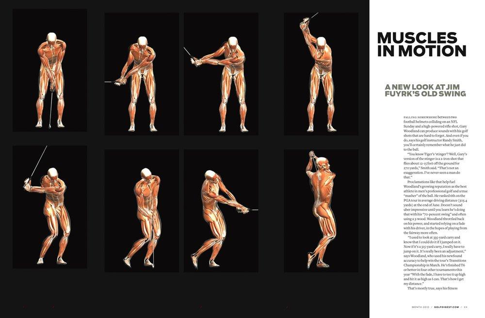 Muscles-in-Motion-Jim-Fuyrk.jpg