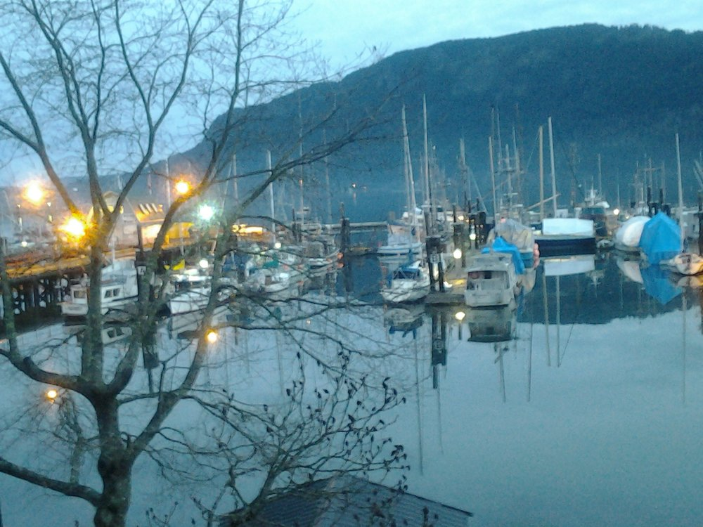 Cowichan Bay in the morning.