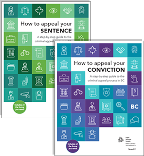 conviction-and-sentence.png