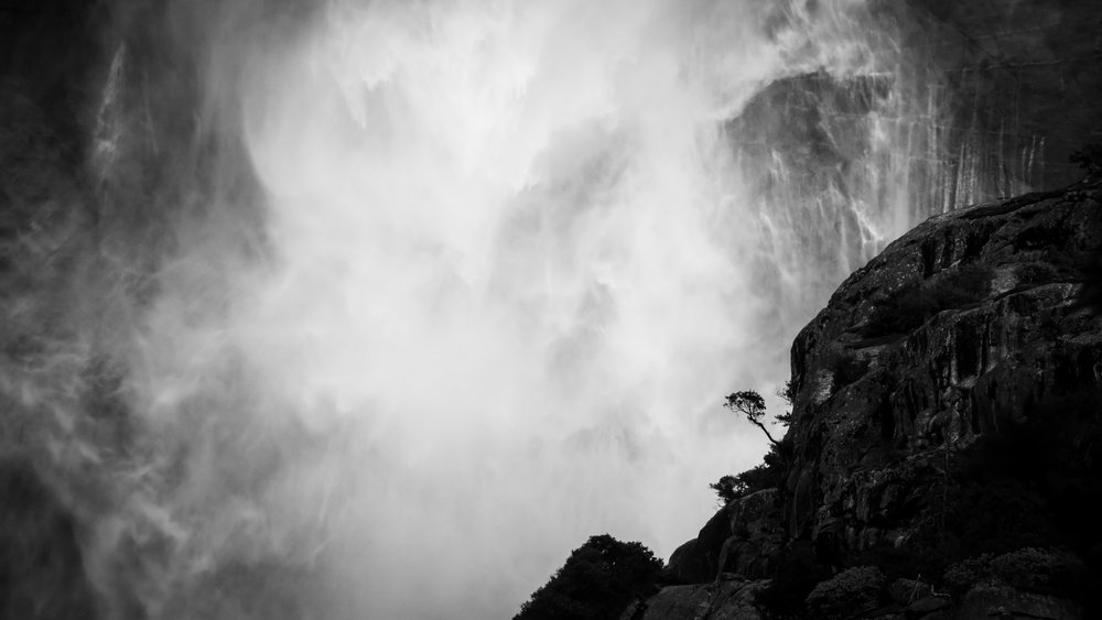 A tree ( wood ) thrives in balance on the side of a mountain ( earth, metal ) in the face of nature's power as a wall of  water , exposed to the wind and sun ( fire ); in the rush of surrounding life, within the elements, the tree's roots rest in their foundation.