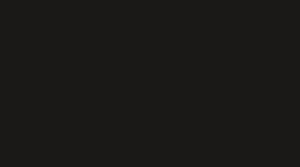 Ron Rizzo Pleve Logo.png