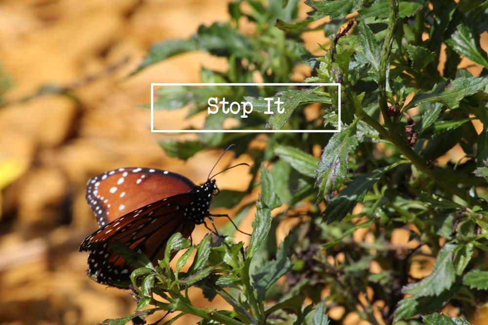 Stop_It.jpg