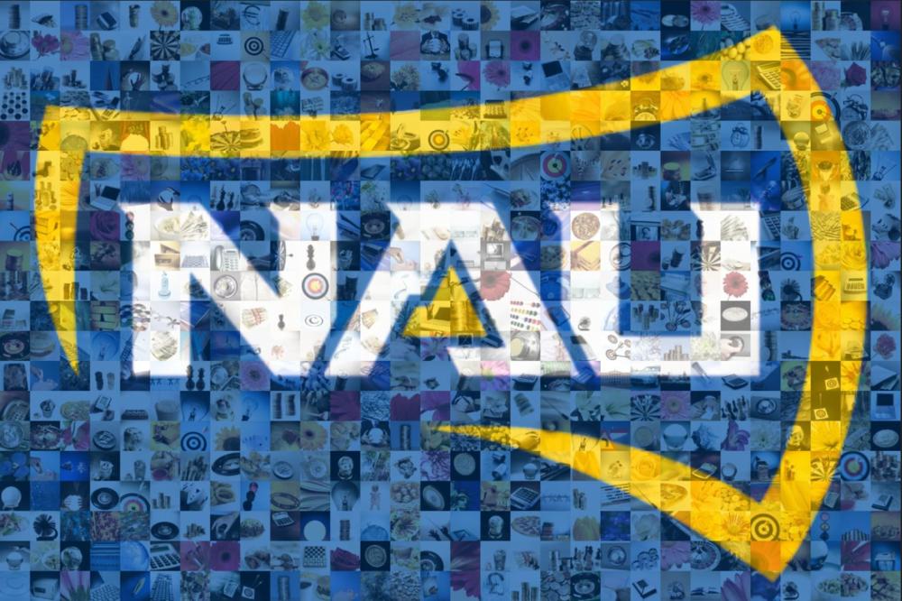 NAU Mosaic.PNG