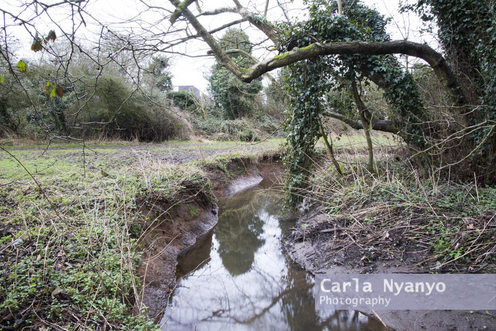 river_sherbourne-175.jpg