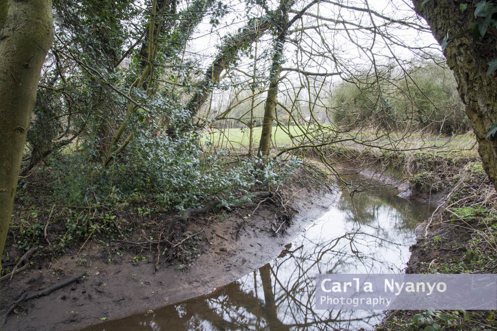 river_sherbourne-179.jpg
