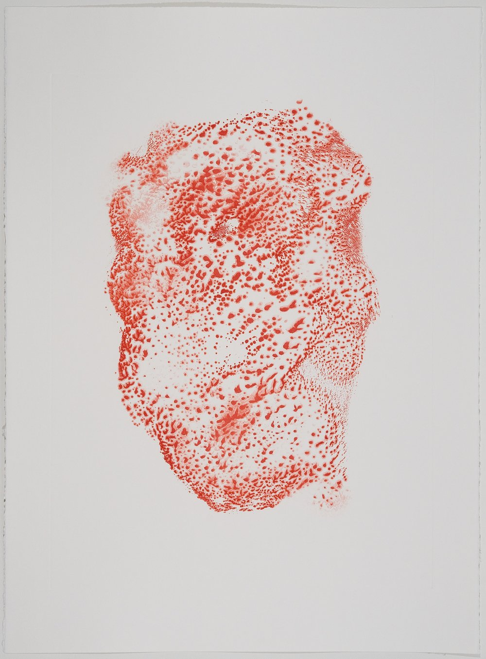 Untitled (I) , 2010 Monotype Image Size: 18 x 26 inches Paper Size: 22 x 30 inches Series of 6
