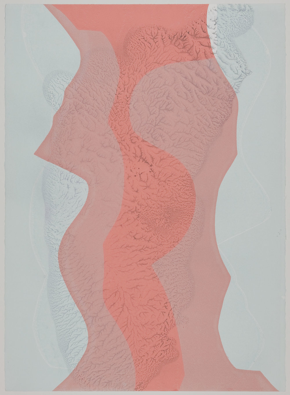 Untitled (VII) , 2012 Monotype Image & Paper: 29 x 21 inches