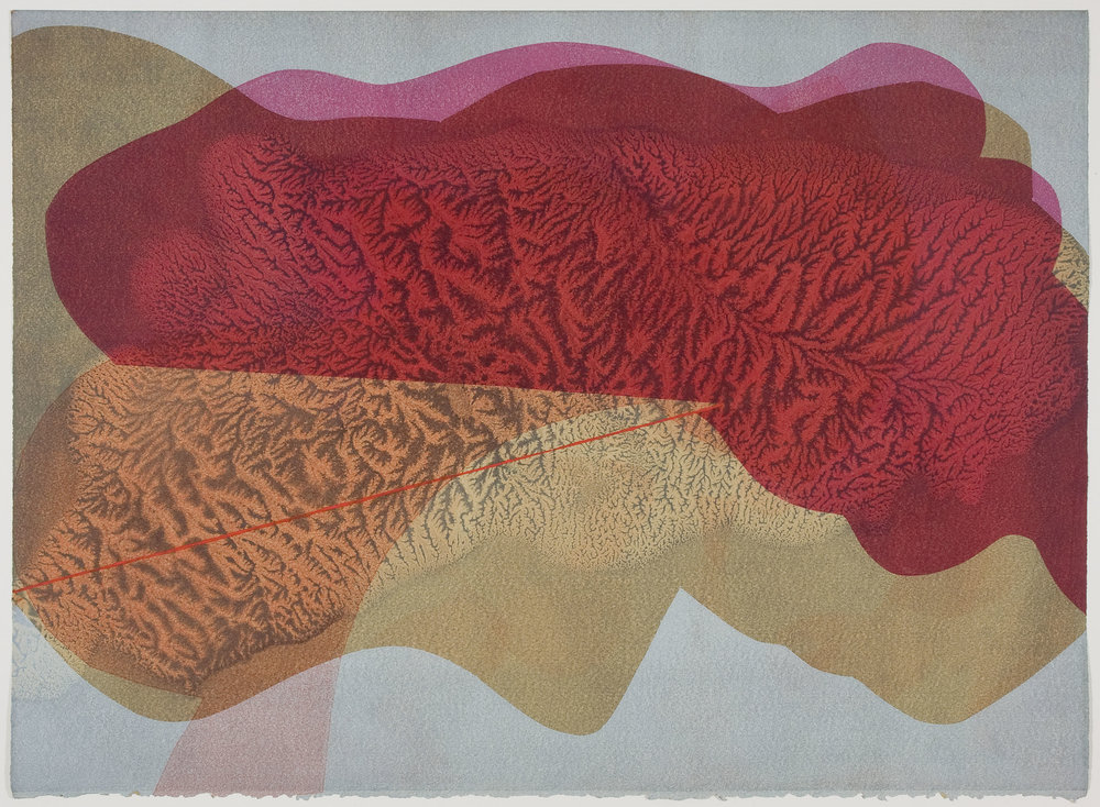 Untitled (I) , 2012 Monotype Image & Paper: 29 x 21 inches Series of 25