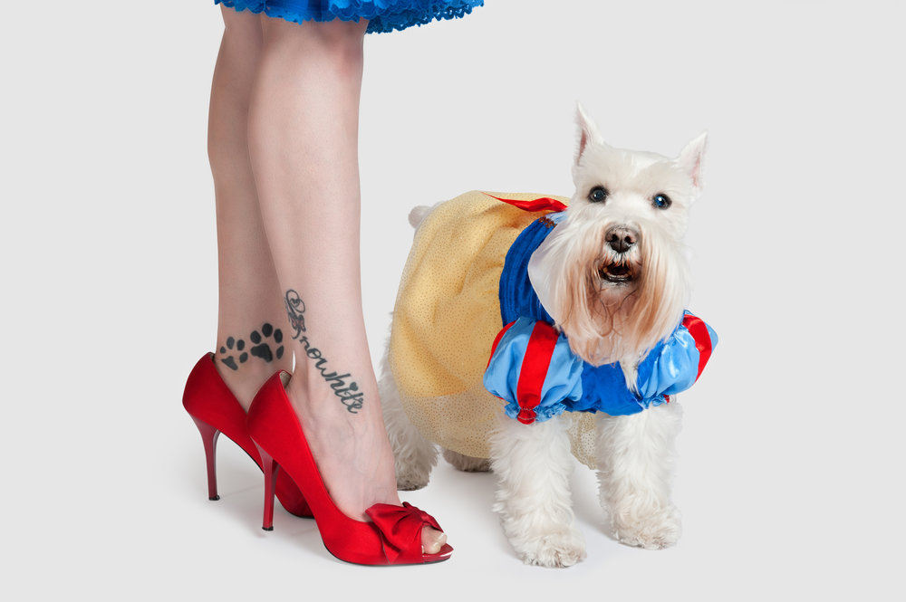 Paola-Paladini-Studio-Snow-white-woman-and-schnauzer-Shoes-and-Dogs