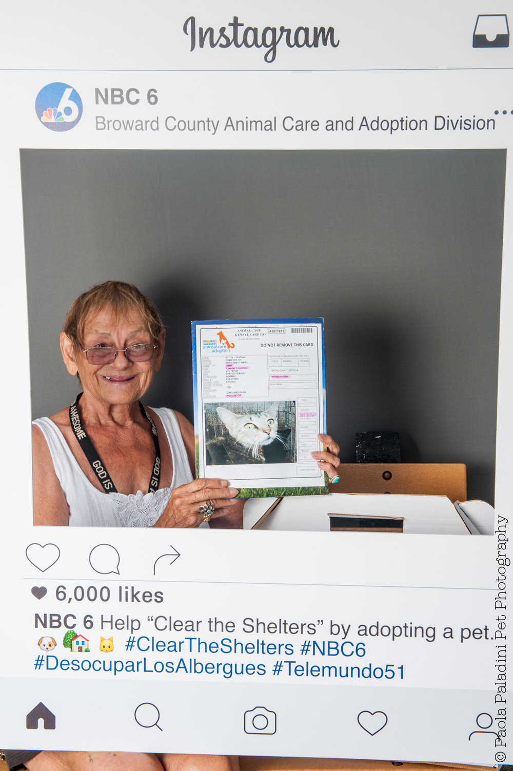 20160723-cleartheshelters-7.jpg