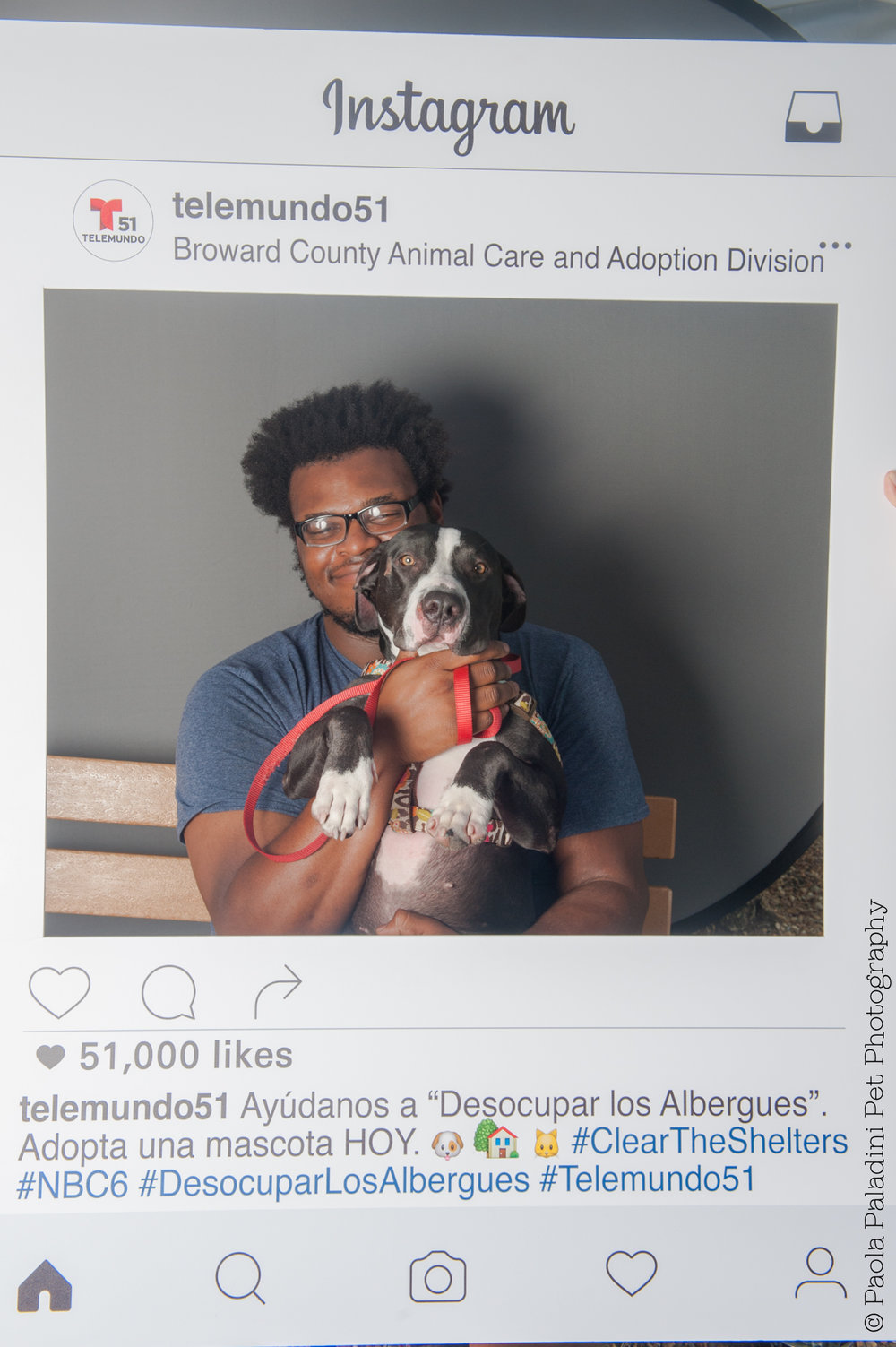 20160723-cleartheshelters-12.jpg