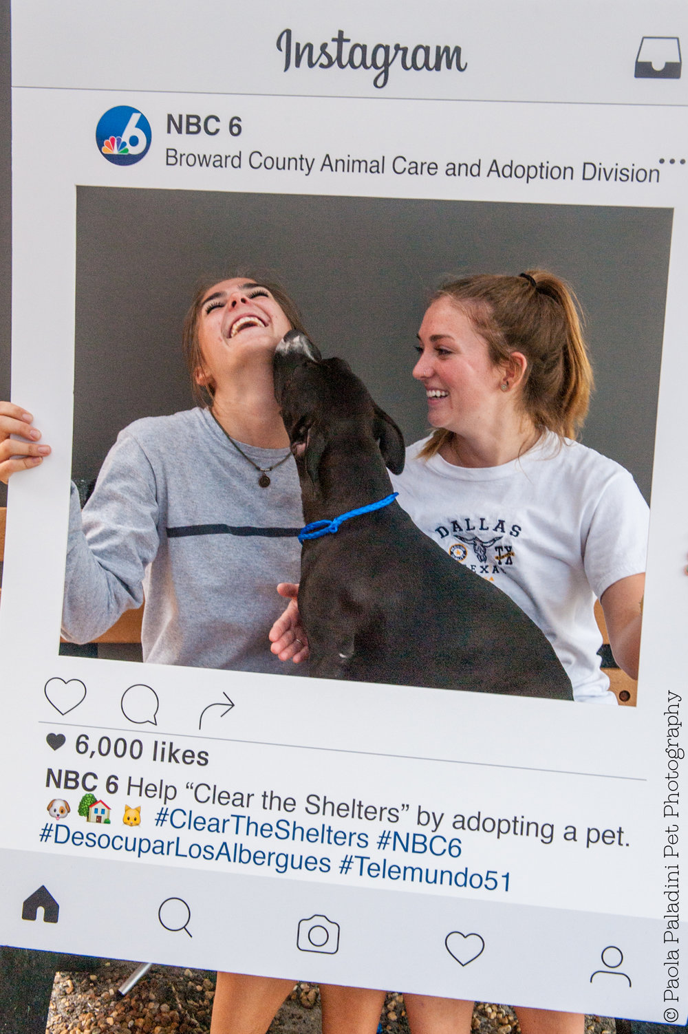20160723-cleartheshelters-20.jpg