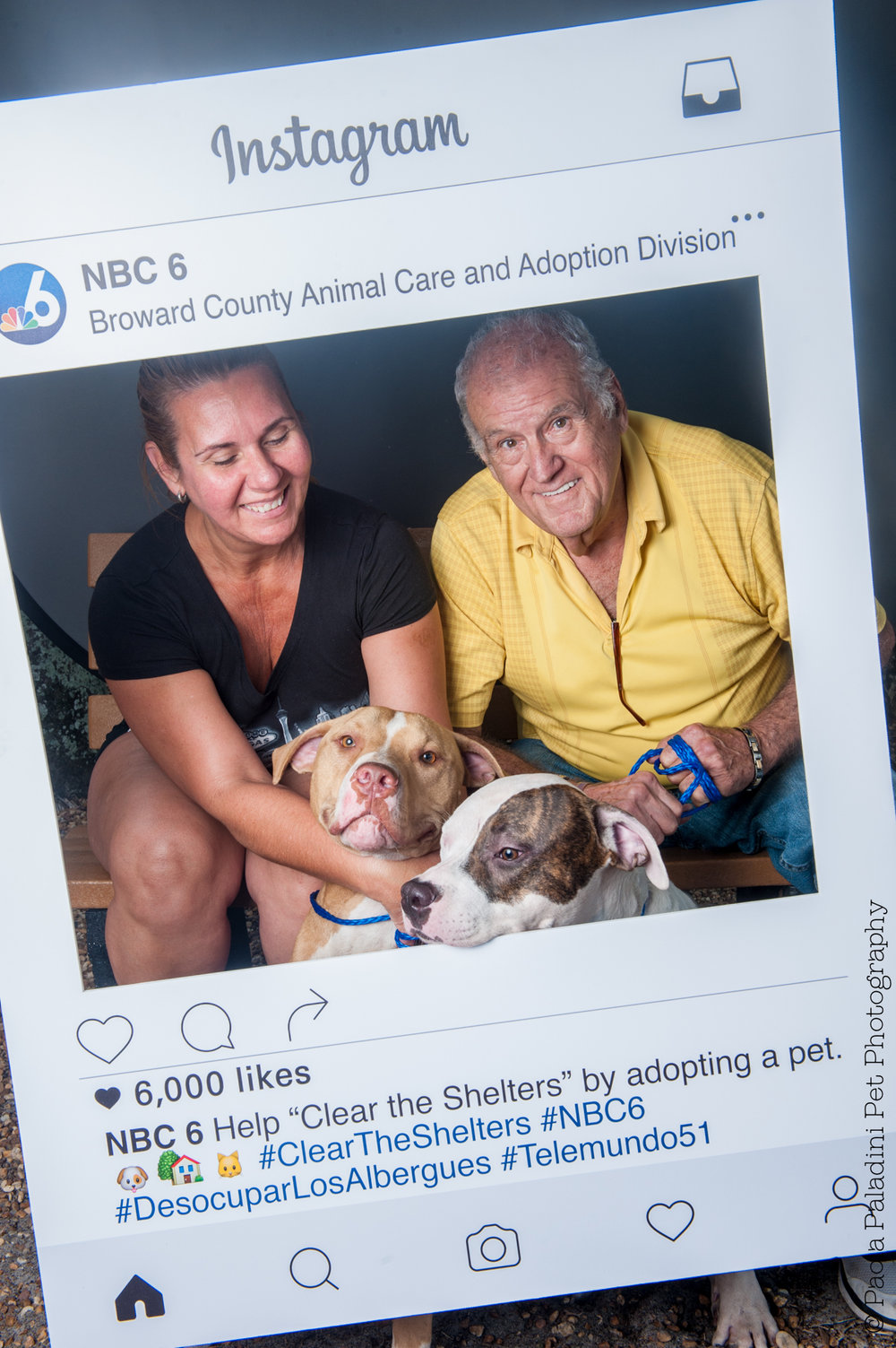 20160723-cleartheshelters-21.jpg