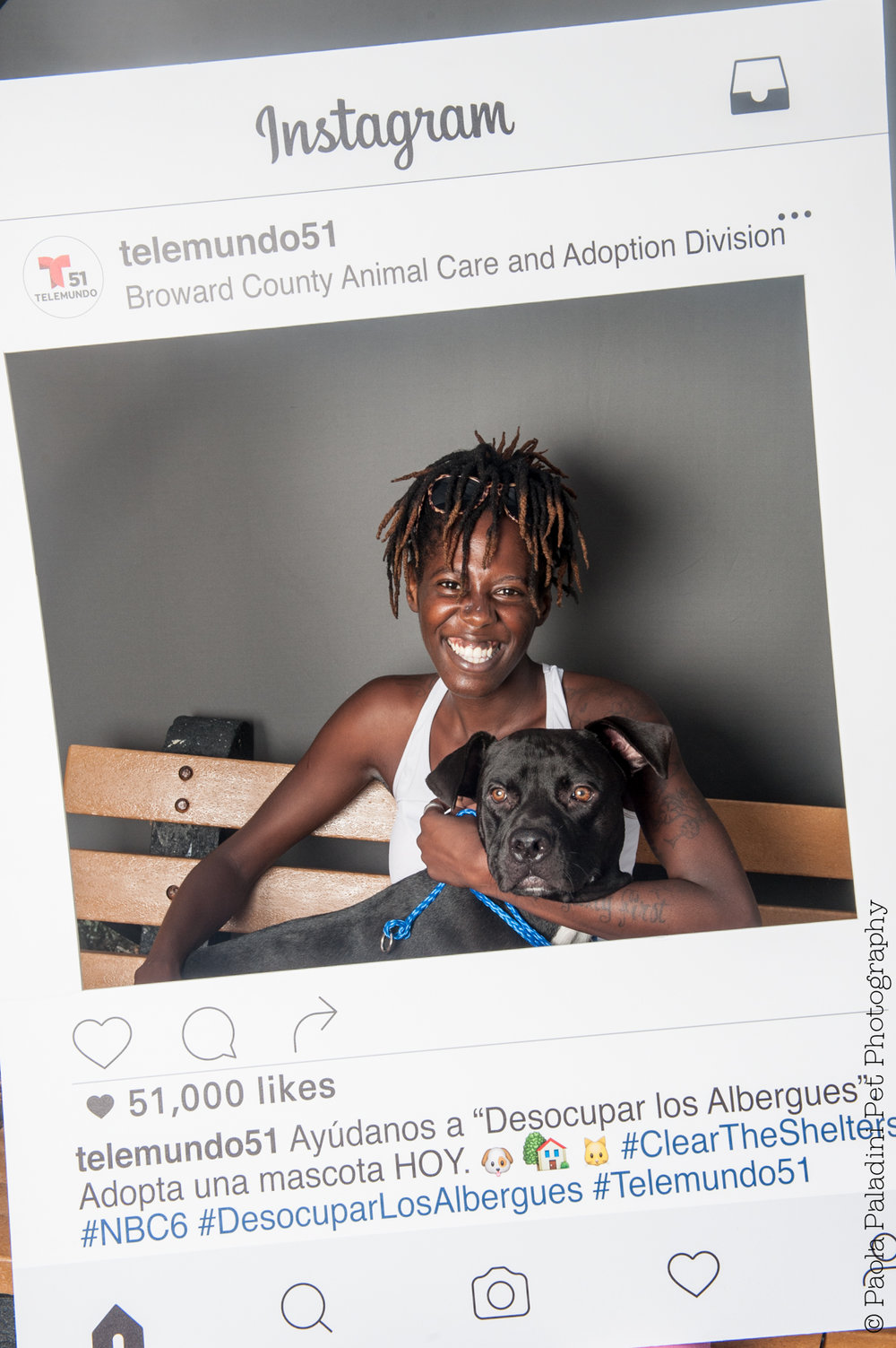 20160723-cleartheshelters-28.jpg