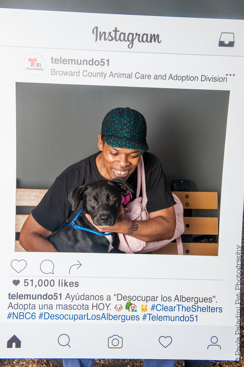 20160723-cleartheshelters-29.jpg