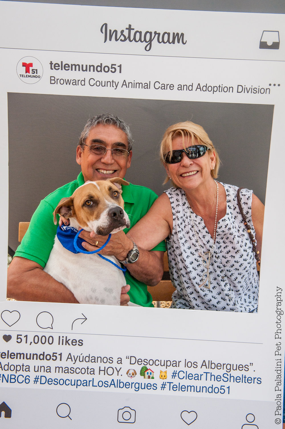 20160723-cleartheshelters-31.jpg