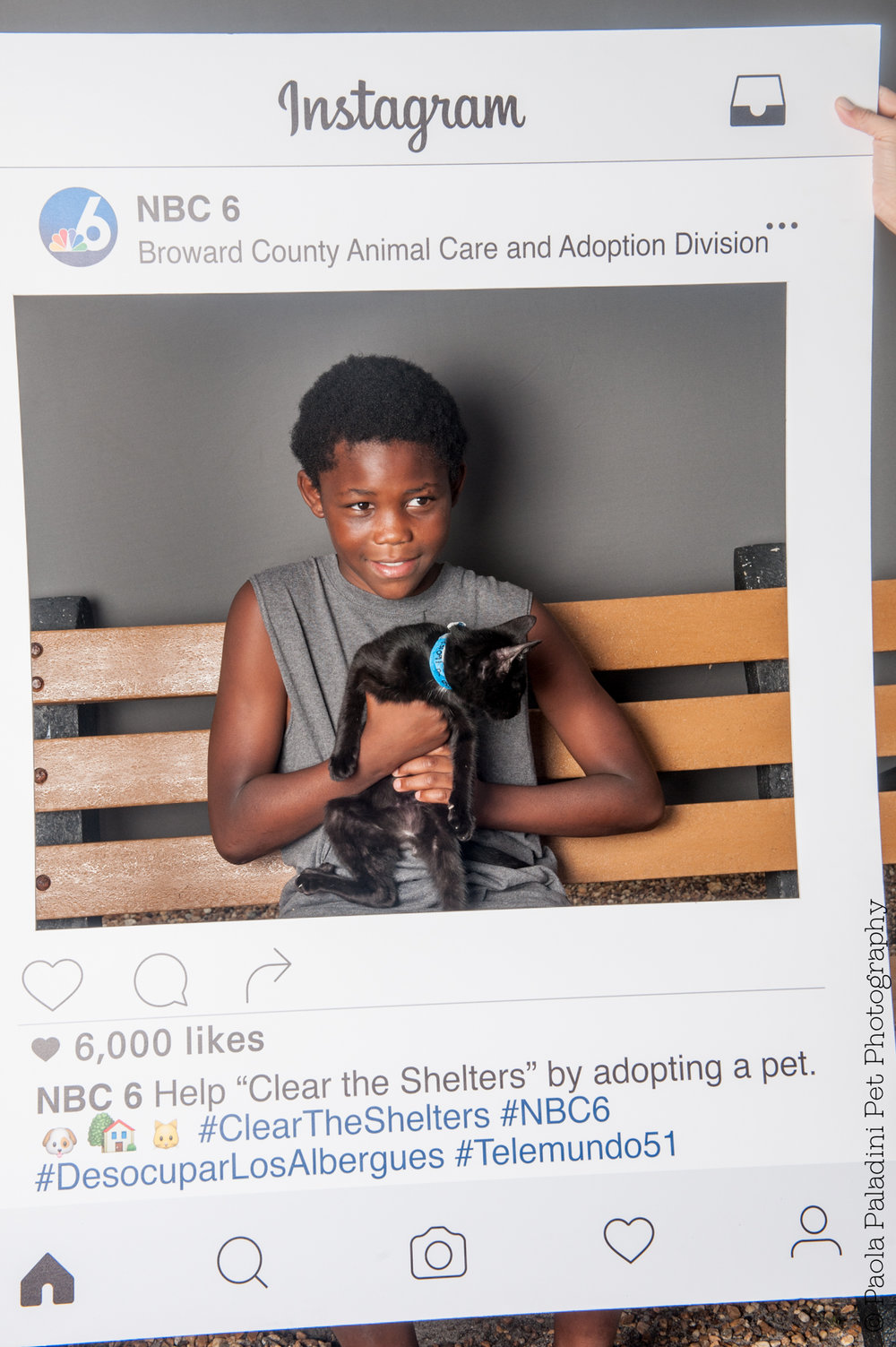 20160723-cleartheshelters-34.jpg