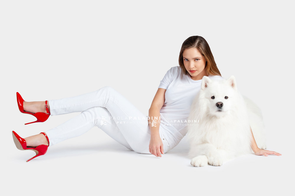 Paola-Paladini-White-on-White-Hounds-and-Heels-Samoyed-dog-1