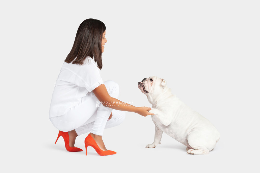 Paola-Paladini-White-on-White-Hounds-and-Heels-Bulldog-2