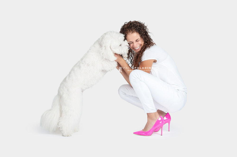 Paola-Paladini-White-on-White-Hounds-and-Heels-poodle-white-dog-pink-shoes
