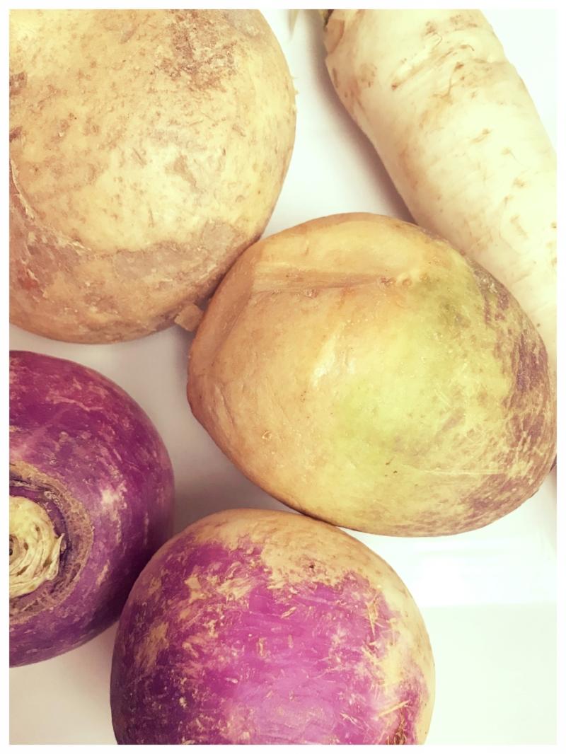 Daikon, Rutabaga, Turnip & Jicama