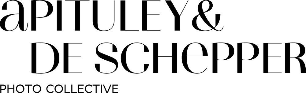 Logo_Apituley & De Schepper.jpg