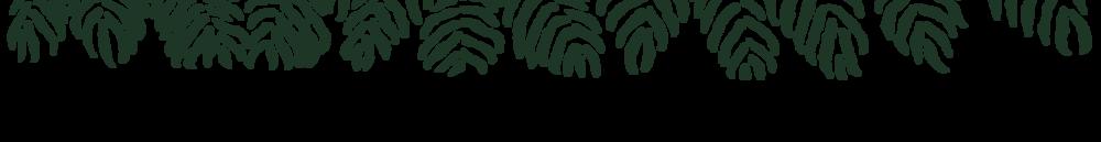 fern background_web.png