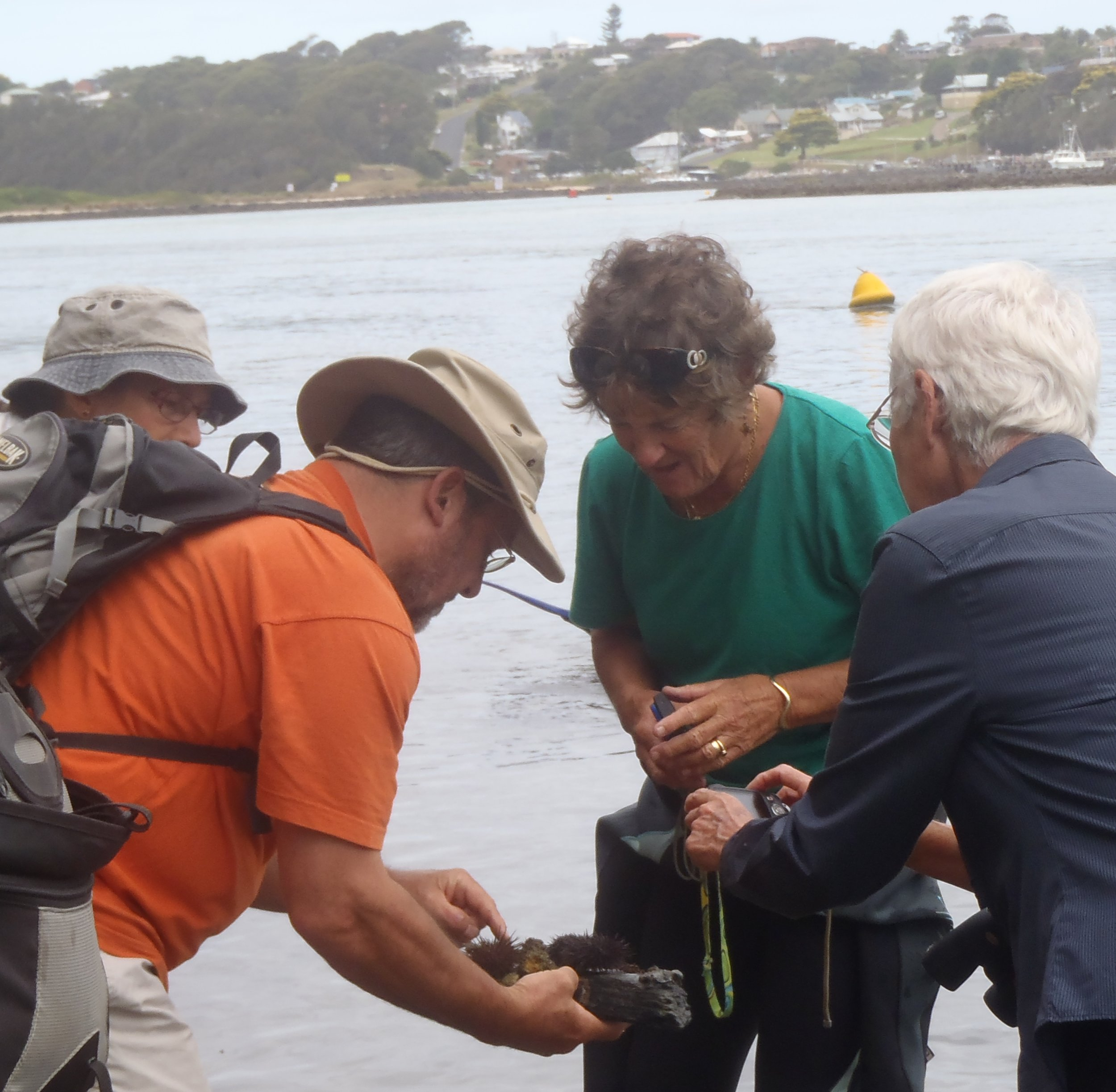 Field work at Narooma