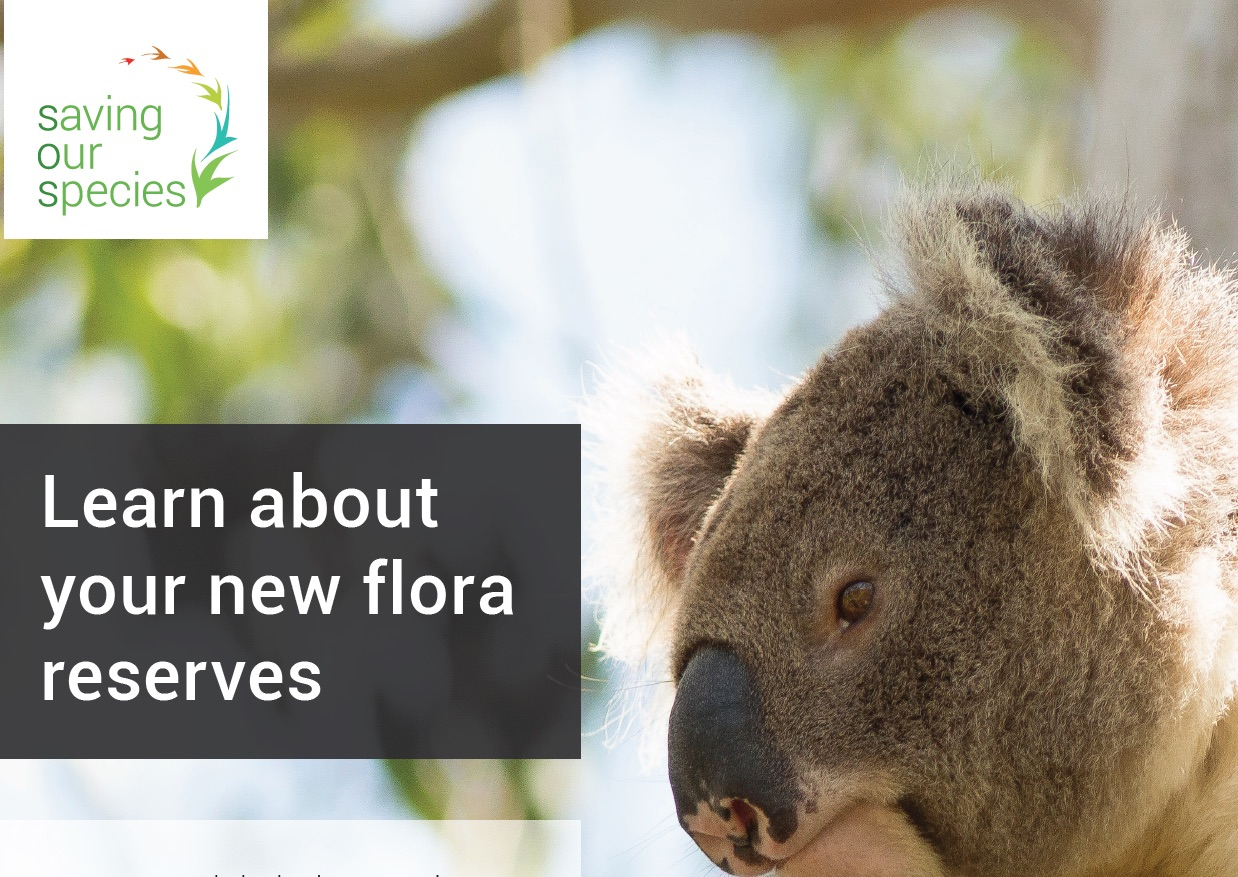 new flora reserves info day