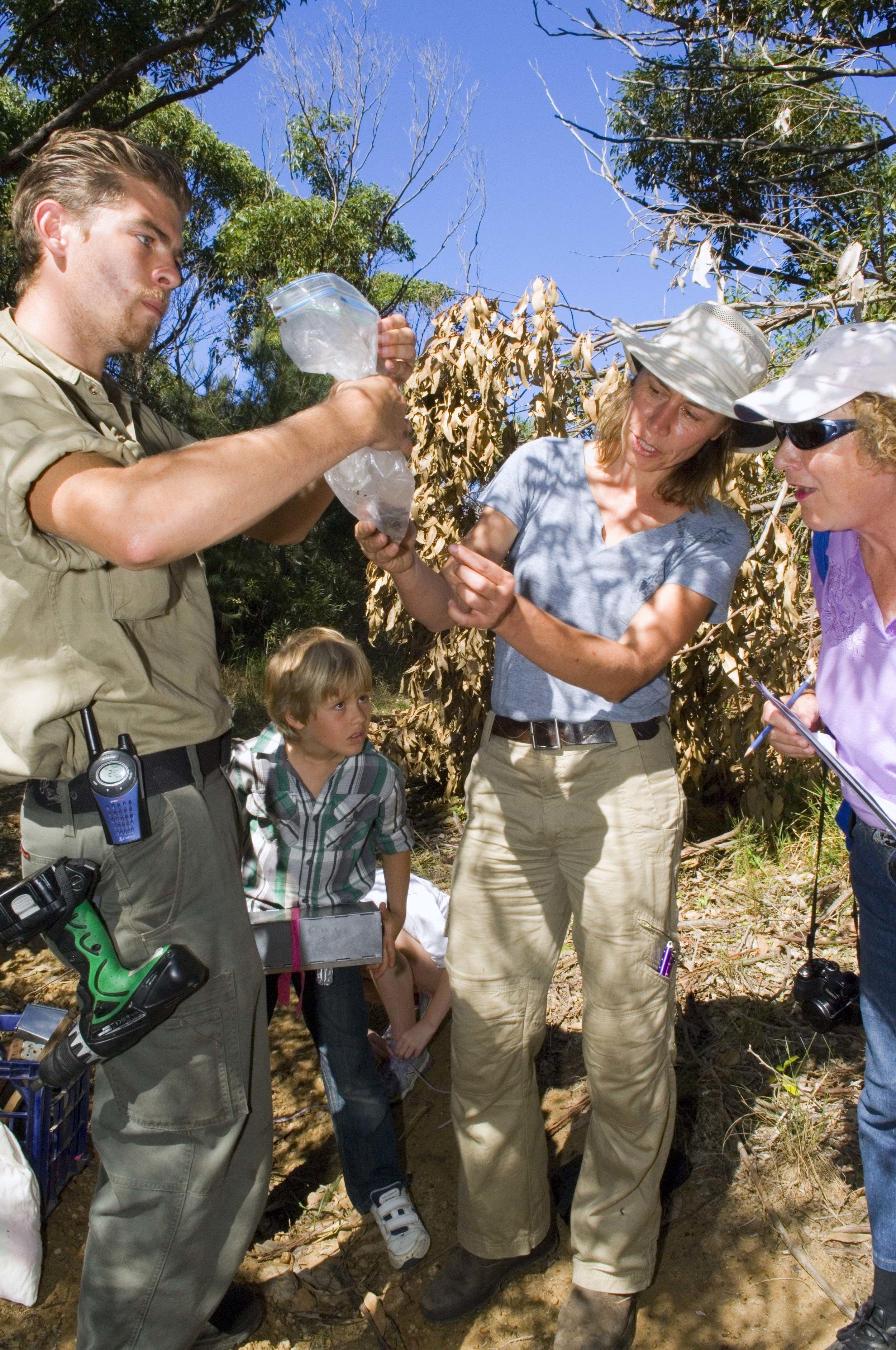 Elisabeth Larsen helps participants ID small mammals