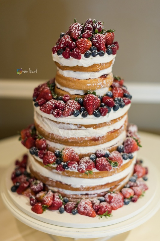 special occassion - Naked_cake_with_fresh_fruit_web_rez.jpg