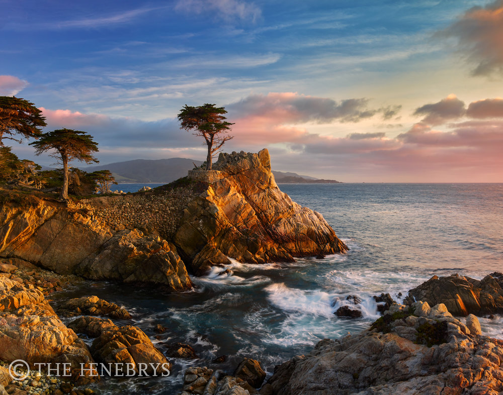 """Steadfast"" Lone Cypress Pebble Beach, California"