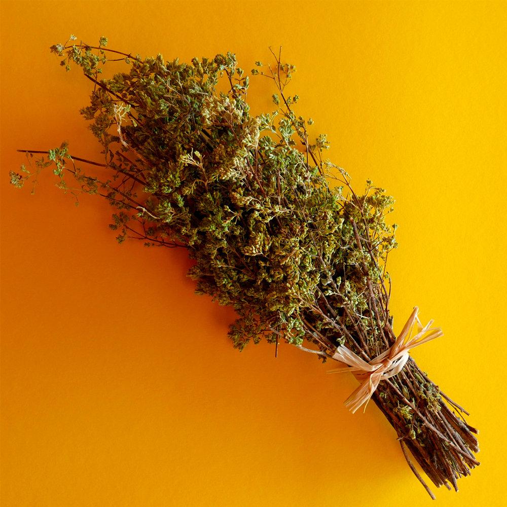 Sf_Herbs.jpg