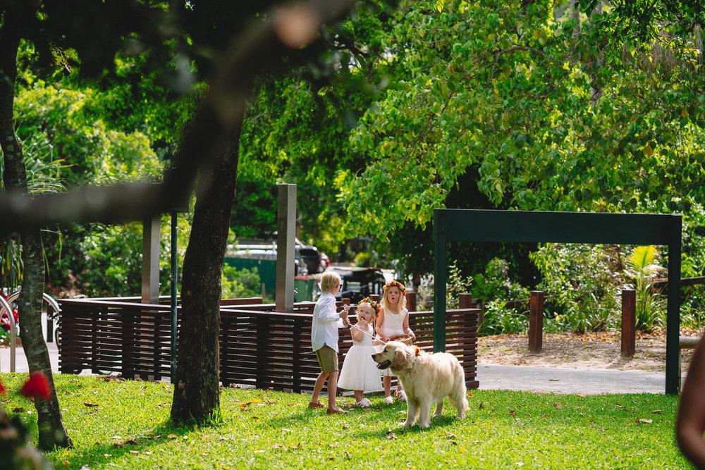 Sunshine coast photographer SJC - 27110.JPG