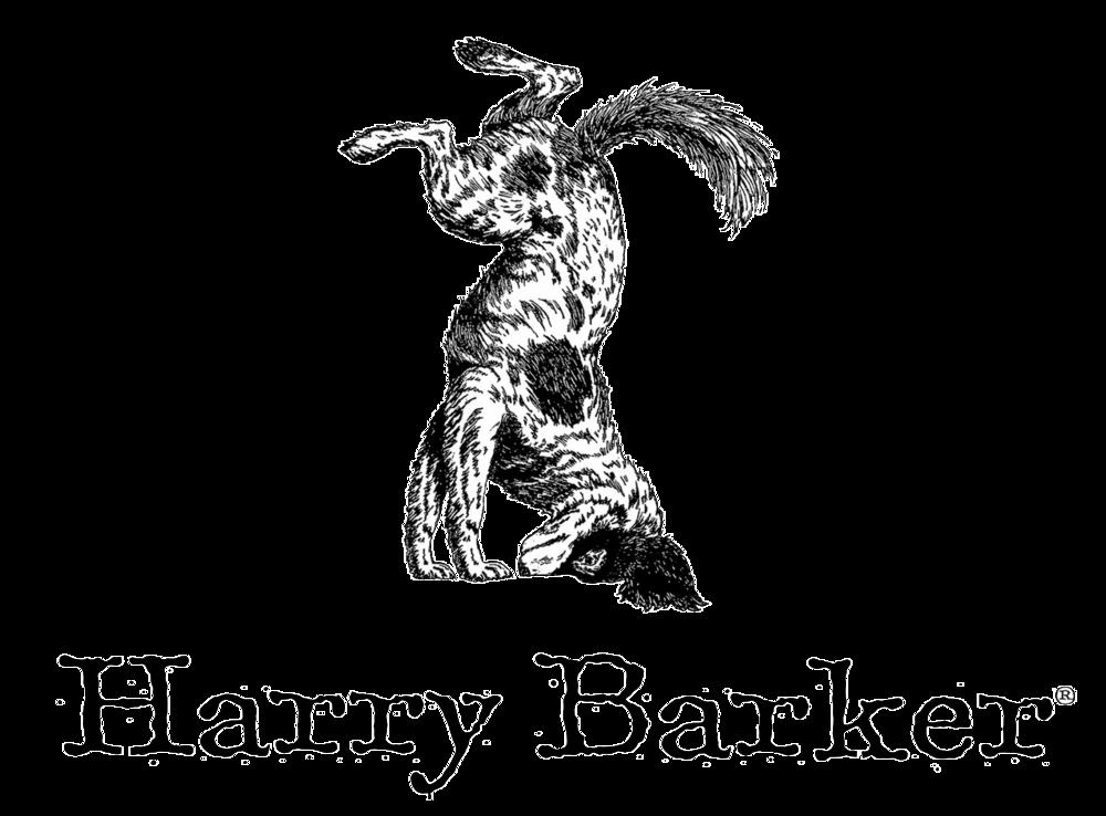 Hb Logo 300dpi.png