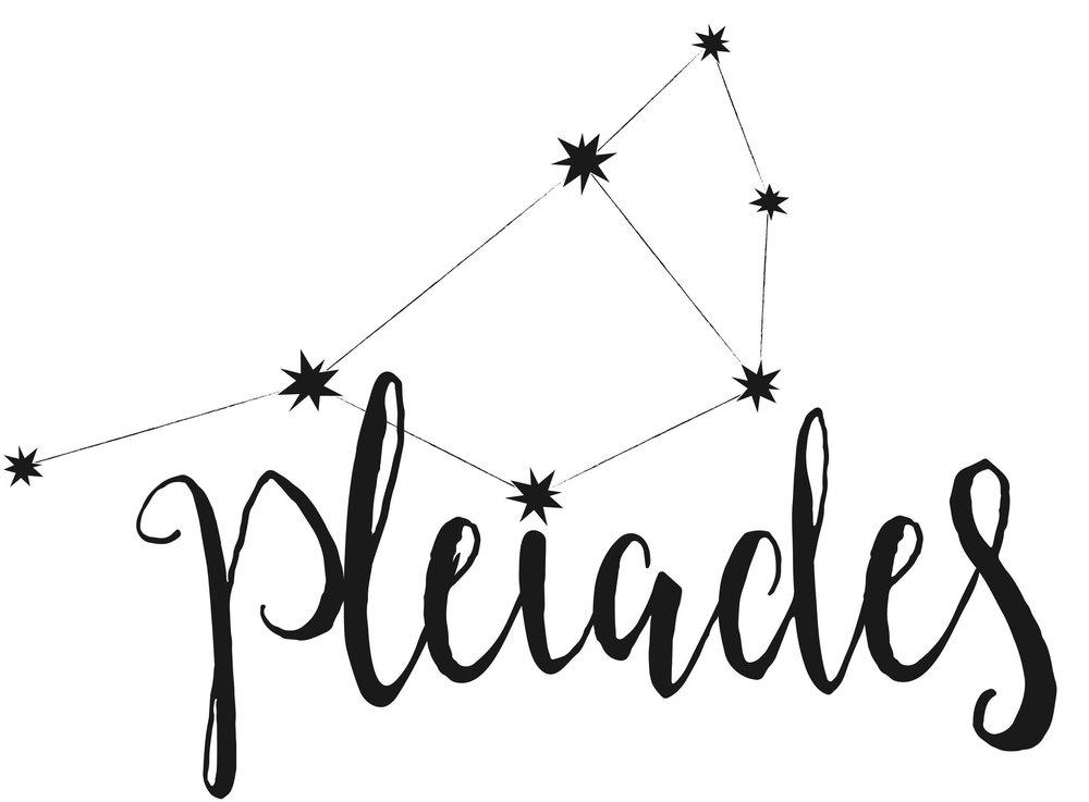 Pleiades Logo.jpg