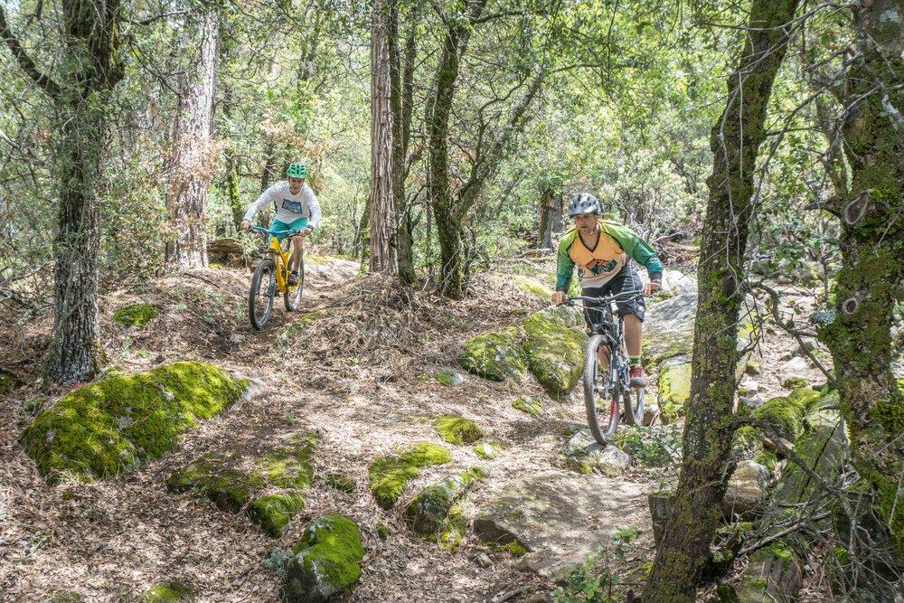 Mountain Biking Willow Creek Trail 2016 - Bass Lake. CA Photo by kim Lawson