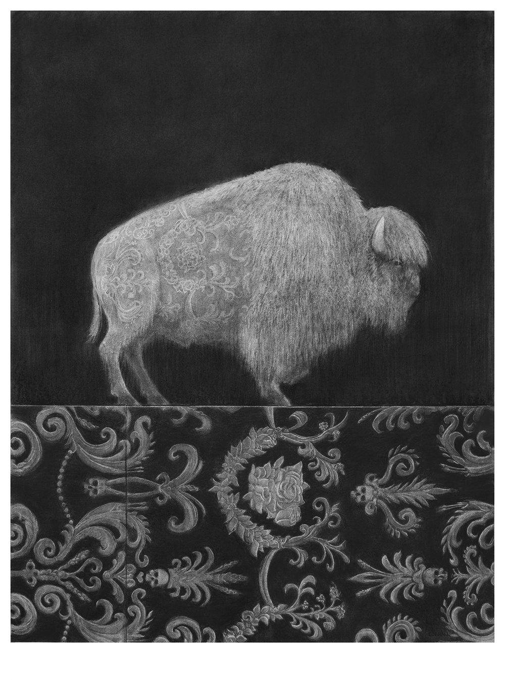 Bison, 2018