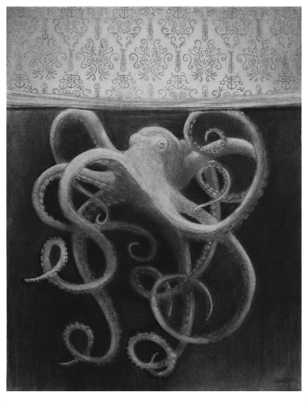 Octopus, 2018