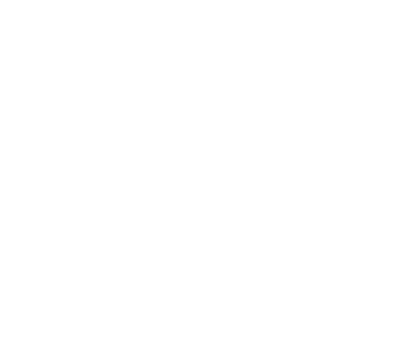 White-Knight window cleaning_logo.png