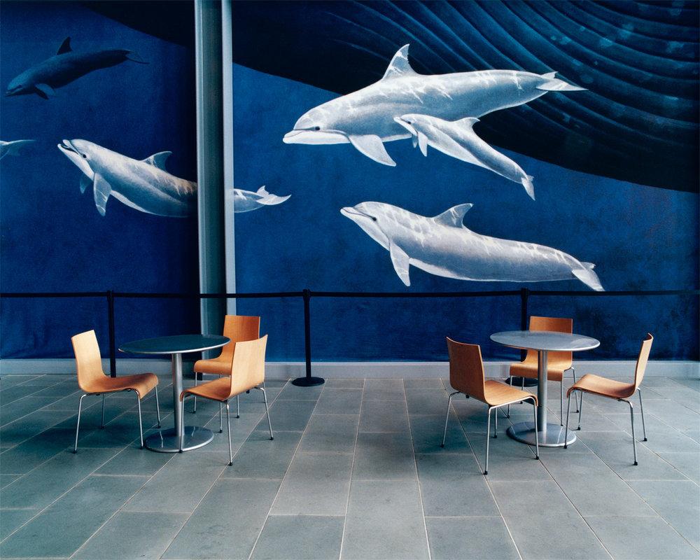 whaling-musuem.jpg
