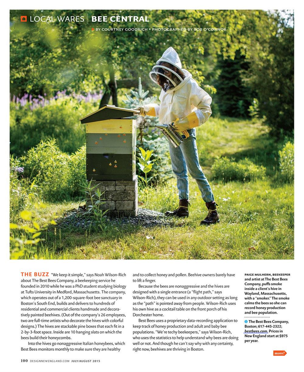 best-bees.jpg