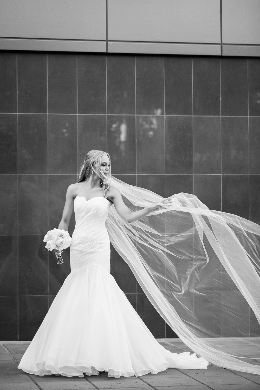 wedding-0265-mermaid-dress-long-veil-brisbane.jpg