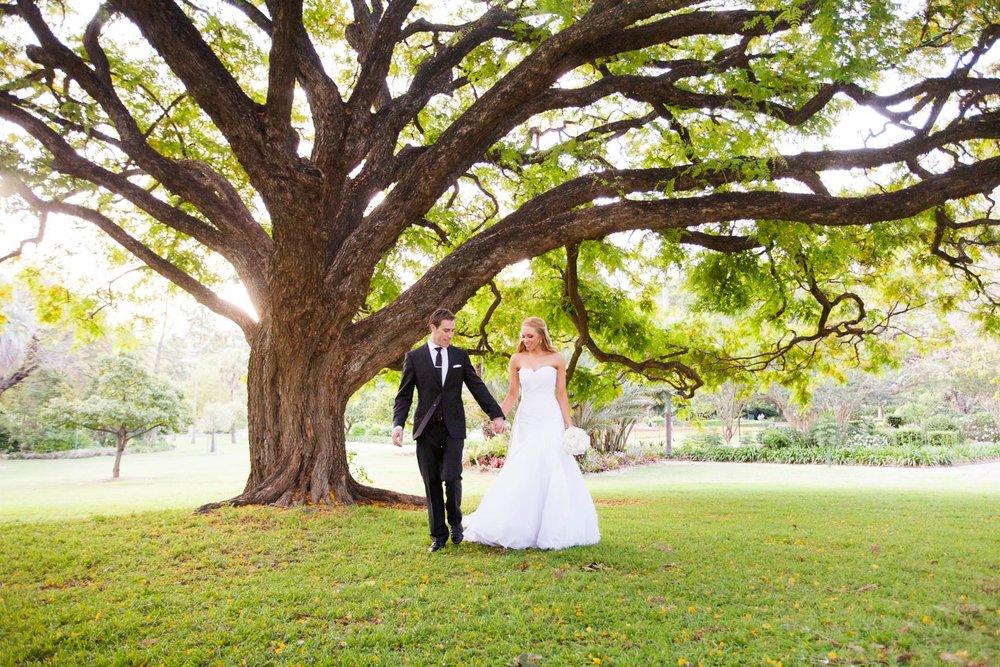 wedding-0276-big-tree-botanical-gardens-australia.jpg
