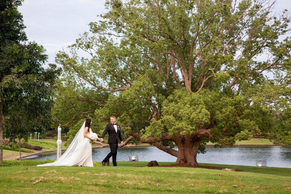 wedding-0235-veil-blacktie-trees-beautiful-brisbane.jpg