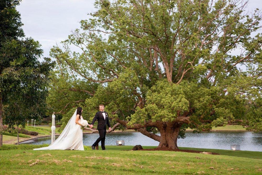 wedding-0473-goldcoast-sanctuary-cove-trees-queensland.jpg