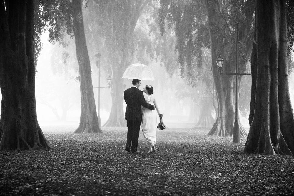 wedding-0483-botanical-brisbane-rain-trees-australia.jpg