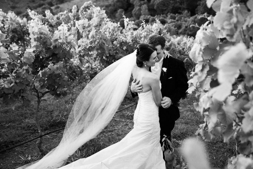 wedding-0494-vineyards-beautiful-veil-blowing-queensland.jpg